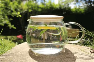 Aquagear Water Filter Pitcher Review: Does It Worth?