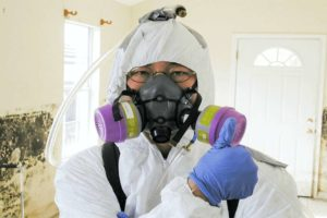 Gas Mask For Virus Protection: Facts & Tips