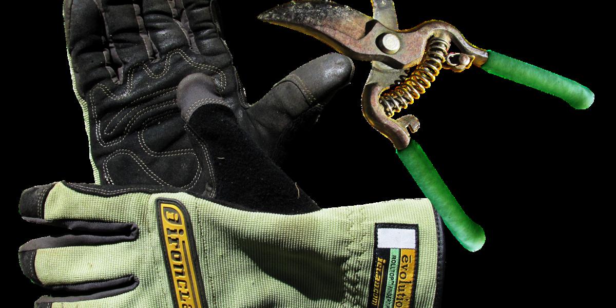 best warm gloves for freezer work